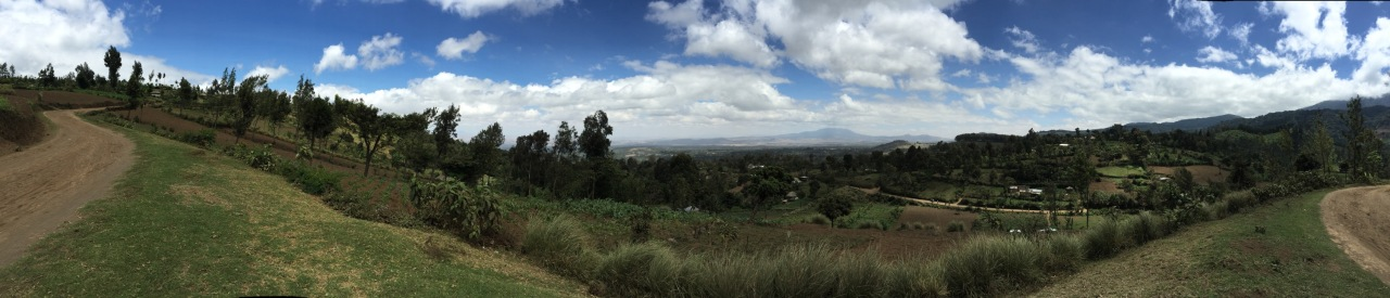 Arusha finally