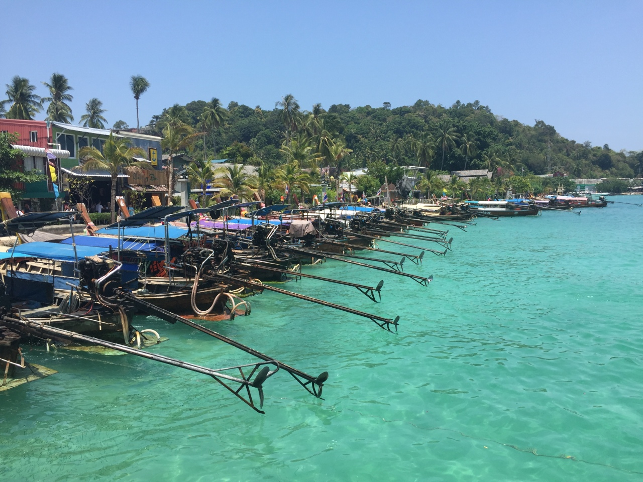 Koh Phi Phi and the attack of the killer crab