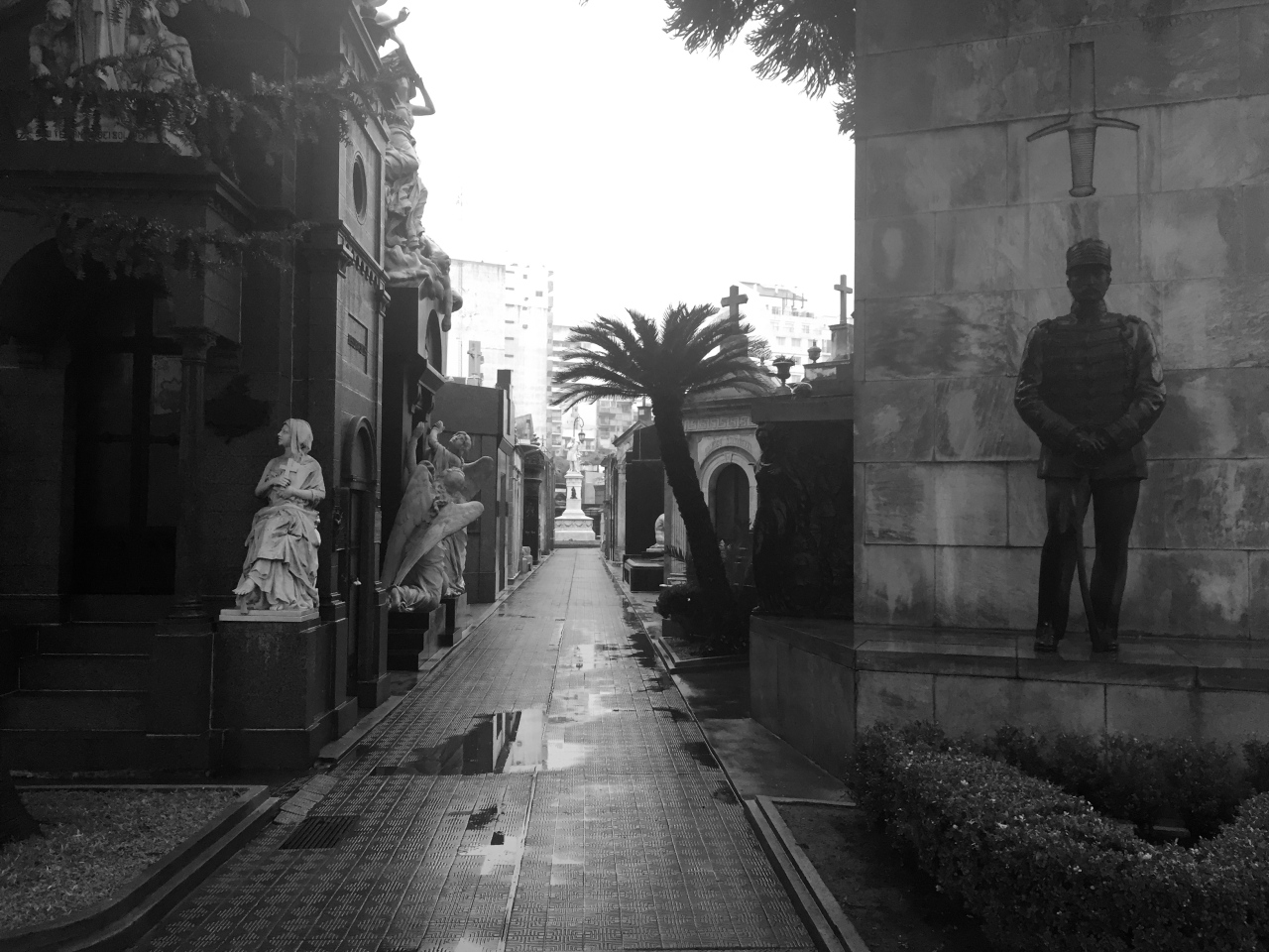 Walking among the dead in BuenosAires