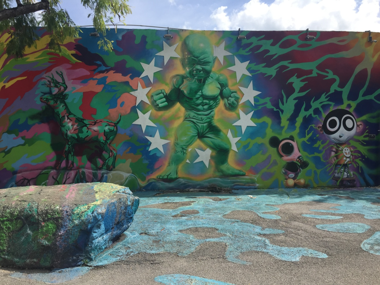 Wynwood Walls a visual delight for any budding artist